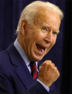 Former Vice President Biden's mental acuity questioned